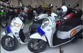 Scoopy ban donat