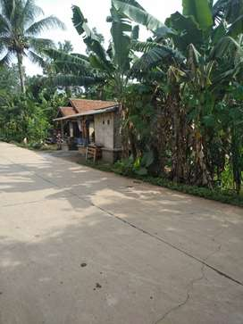 Jual Tanah Pinggir Jalan Besar dan dekat Stasiun Cilejit Parung
