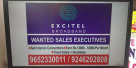 Marketing and sale excutive