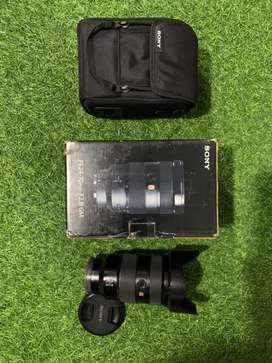 Sony 24-70 f2.8 GM sapujagat