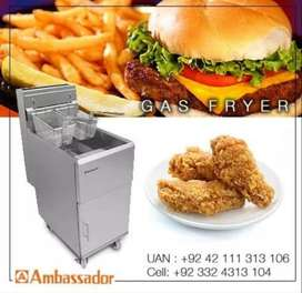 Gas deep Fryer for fast food