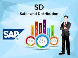 SAP SD Classes with Preparation for SAP Job