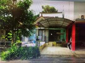 Disewakan rumah di grand taman sari samarinda 15 jt/thn