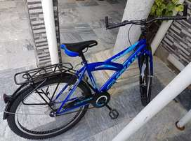 Caspian adult size bicycle