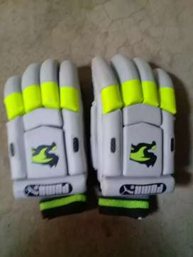 Cricket Bating Gloves for right Handers