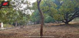 Residential land for sale in Akathethara, Palakkad