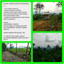 Dijual Tanah Kebun Jeruk dengan View Sangat Indah, Luas 6032m2