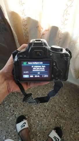 Canon 600d (Rent)