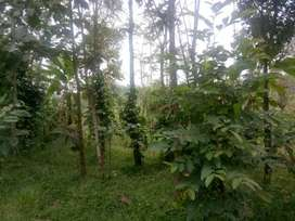 1acre agriculture/farm land available in