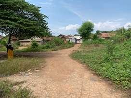 Tanah disewakan