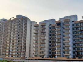 Ready To Move 2BHK Just 19.16 Lakhs Near Subhash Chowk, Gurgaon
