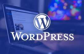 I will create an eye catching wordpress website for your business