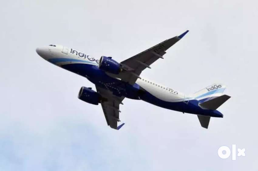 indigo airlines jobs All India Vacancy opened - Make your career in Do 0