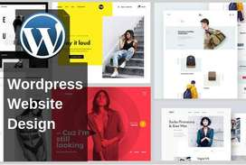 I will build wordpress website design, redesign or ecommerce store