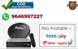 DISH TV DTH NEW CONNECTION available CALL US FOR