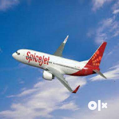Job Apply in Airlines Hiring job Staff for Various roles & profiles or 0
