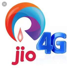 Jio company required a collection officer