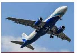 Jobs 2019 indigo airlines