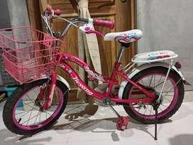 Sepeda anak cewek