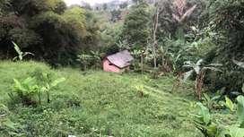 Tanah dijual dengan harga murah pinggir jalan