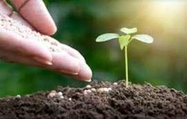 ઔષધિય છોડ અને ઓર્ગેનિક ખાતર તેમજ ટપક સિંચાઈ માટે