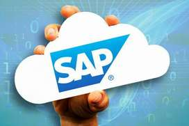 SAP MM and SD tuition s online(Courses after B Tech and graduation)