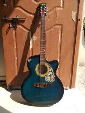 Acoustic Guitar Hobner