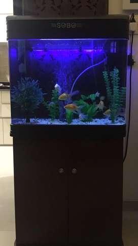 Aquaroum with table
