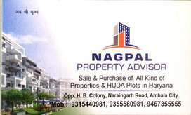 Nagpal property advisor
