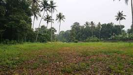 KochinProperties-Kuruppumpadi-House plot-Land for sale 50cent