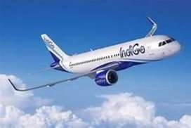 Male and female both require-Airline job call us for more detail  Male