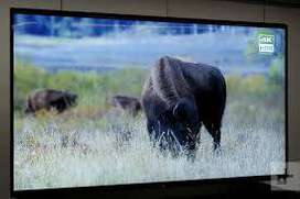 "android smart led 43"" sony panel"