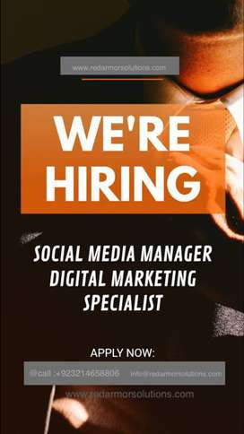 SEO SMM expert required