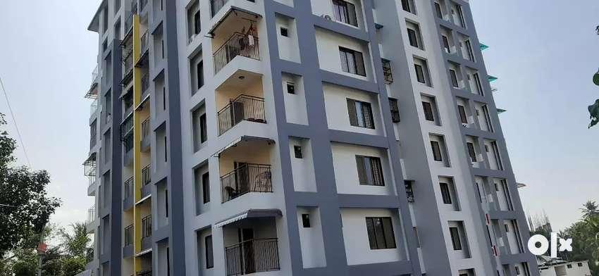 3 bhk flat at kakkanad. 93879O3O_8.4/77366334_4.6 0
