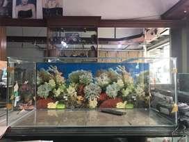 Ready aquarium 100x45x40 background