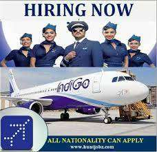 ndigo Company Ground Staff Job Vacancy Airline Industry - Airport Job