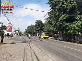Dijual Tanah Strategis Bisa di CICIL  7 Th Tanpa Bunga di Jl. Ketapang