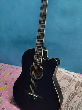 Acoustic Guitar(Dolphin)