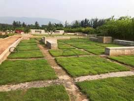 VUDA APPROVED OPEN PLOTS FOR SALE AT DUVVADA TO SABBAVARAM ROAD