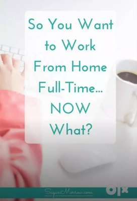 Data entry job online/offline part time job from home.No investment
