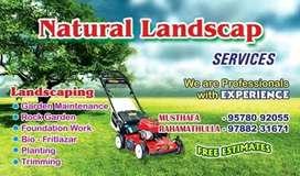 Natural landscape services