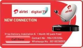 Airtel FTA Pack SD Box 953/-