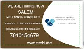 MSE FINANCIAL SERVICES LTD