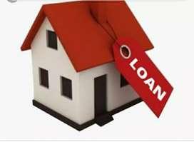 Loan hi loan