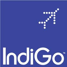 We are hiring for back office in Goa airport