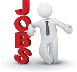 Free Job In Agara