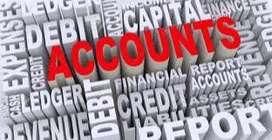 Providing statutory services of GST returns & Income Tax returns