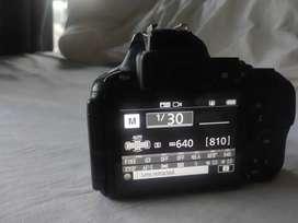 Nikon D5600 Nd lenses selling