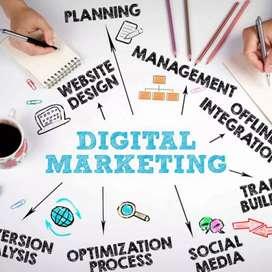 Digital Marketing Company in Ludhiana