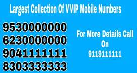 Best numbers of india